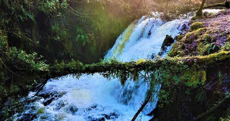 Exploring Venford Resevoir and Venford Falls